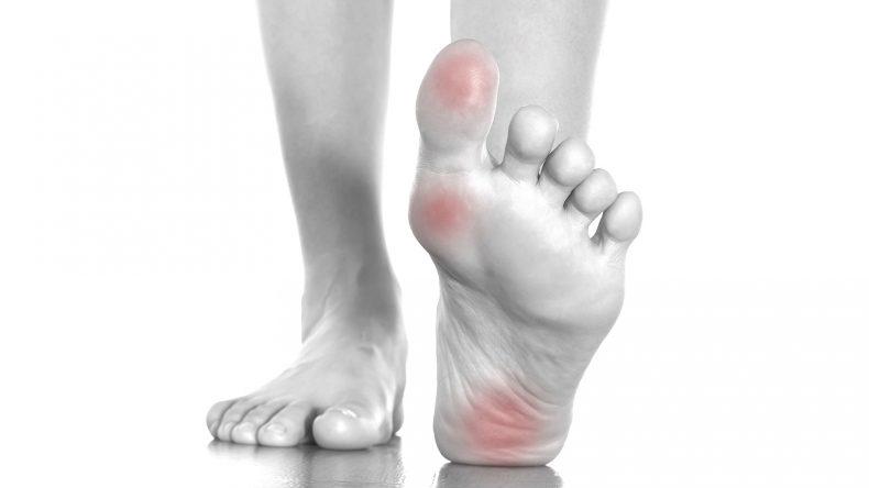 muscoli piede